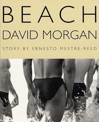 The Beach  by  David Morgan