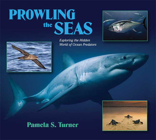Prowling the Seas: Exploring the Hidden World of Ocean Predators  by  Pamela S. Turner