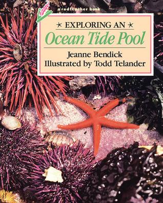 Exploring an Ocean Tide Pool Jeanne Bendick