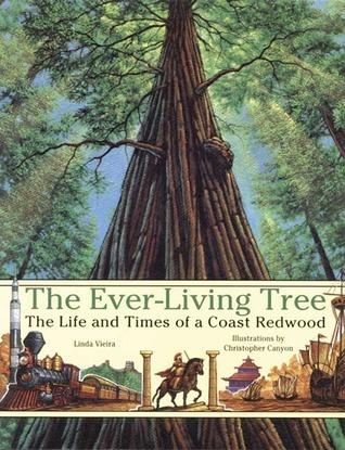 Ever-Living Tree Linda Vieira