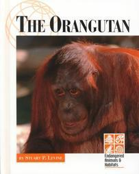 The Orangutan Stuart P. Levine