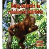 Baby Animals in Rainforest Habitats  by  Bobbie Kalman