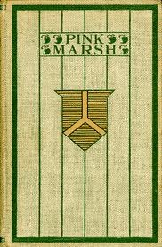 Pink Marsh: A Story of the Streets and Town  by  George Ade