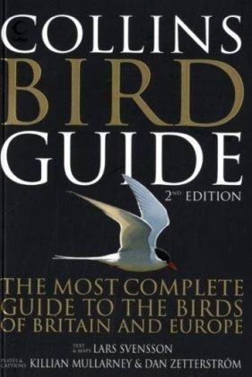 Collins Bird Guide Lars Svensson