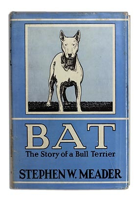 Bat: The Story of a Bull Terrier  by  Stephen W. Meader