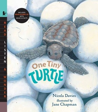 One Tiny Turtle with Audio: Read, Listen, & Wonder  by  Nicola Davies