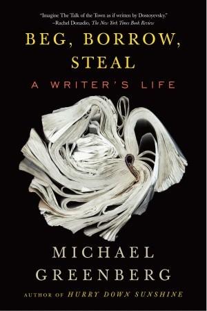 Hurry Down, Sunshine: A Memoir Michael  Greenberg