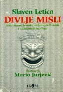 Divlje misli: Ilustrirana kronika zabranjenih misli i zakašnjele povijesti Slaven Letica