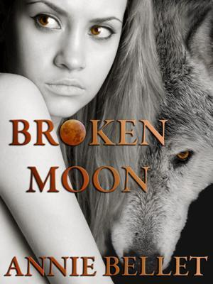 Broken Moon  by  Annie Bellet