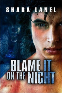 Blame It on the Night  by  Shara Lanel