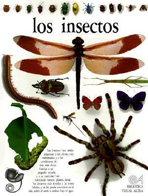 Insectos - Insects: Eyewitness Book  by  L.A. Mound