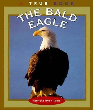 The Bald Eagle  by  Patricia Ryon Quiri