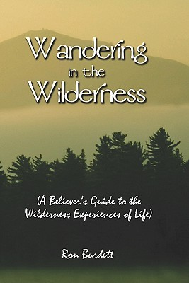 Wandering in the Wilderness: A Believers Guide to the Wilderness Experiences of Life  by  Ron Burdett