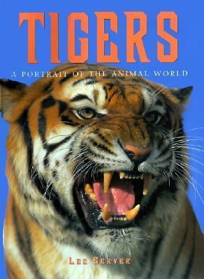 Tigers Lee Server