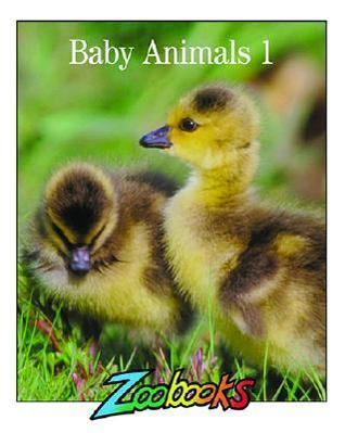 Baby Animals 1 (Zoobooks) John Bonnett Wexo