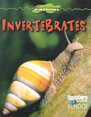 Invertebrates Kathleen Feeley