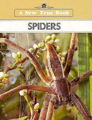 Spiders  by  Illa Podendorf