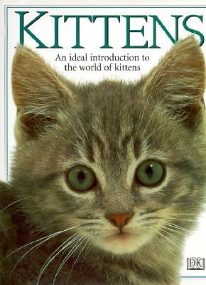 Kittens Carey Scott