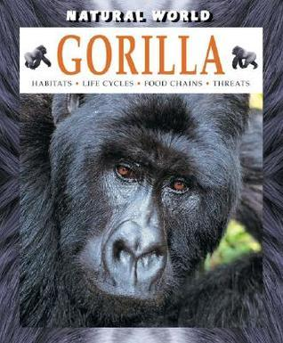 Gorilla  by  Stephen Brend