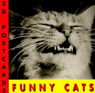 Funny Cats Postcard Book  by  J.C. Suares