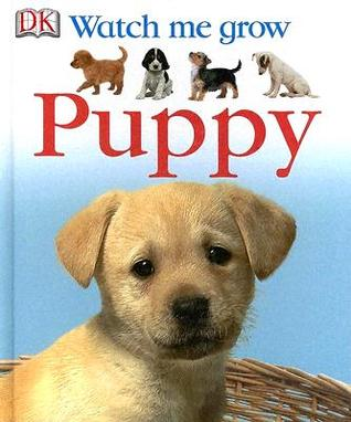 Puppy  by  Lisa Magloff