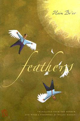 Feathers  by  Haim Beer