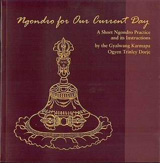 Ngondro for Our Current Day: A Short Ngondro Practice and Its Instructions Ogyen Trinley Dorje