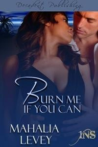 Burn Me if You Can (1Night Stand, #6)  by  Mahalia Levey