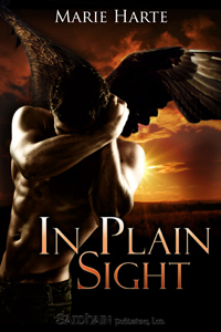 In Plain Sight (Cougar Falls, #2) Marie Harte