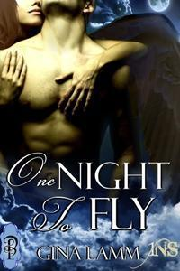 One Night to Fly (1Night Stand, #46)  by  Gina Lamm