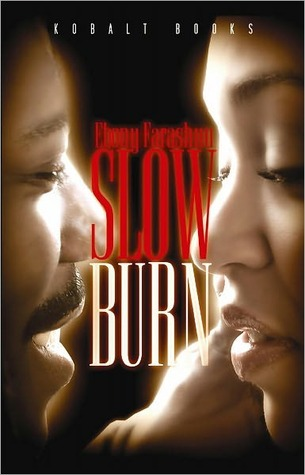 Slow Burn  by  Ebony Farashuu
