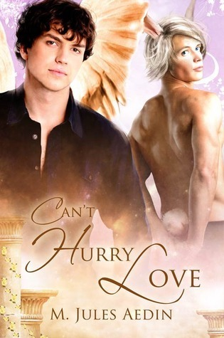 Cant Hurry Love  by  M. Jules Aedin