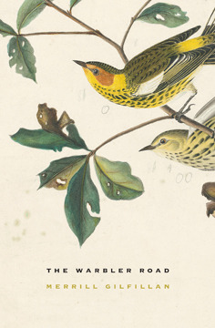 The Warbler Road  by  Merrill Gilfillan