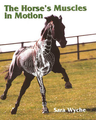 The Horses Muscles in Motion  by  Sara Wyche