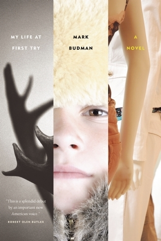 My Life at First Try  by  Mark Budman