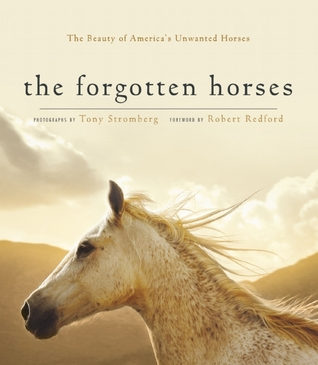 The Forgotten Horses: The Beauty of Americas Unwanted Horses  by  Tony Stromberg