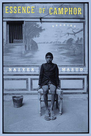 The Snake Catcher  by  Naiyer Masud