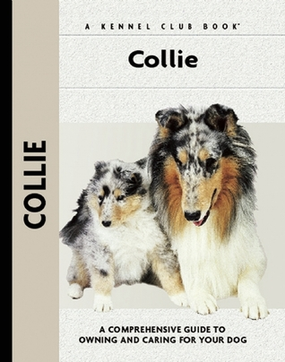 Collie  by  Samantha Moore
