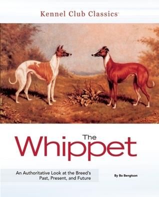 The Whippet  by  Bo Bengtson