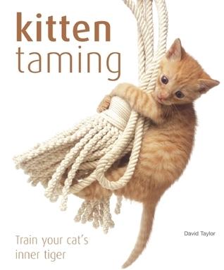 Kitten Taming: Train Your Cats Inner Tiger David Taylor