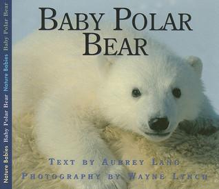 Baby Polar Bear Aubrey Lang