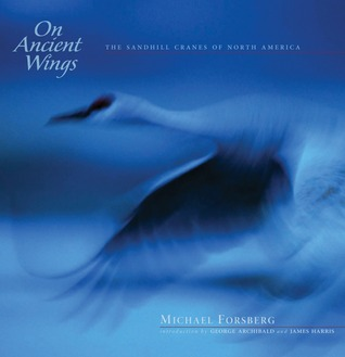 On Ancient Wings: The Sandhill Cranes of North America  by  Michael Forsberg