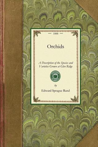 Orchids Edward Sprague Rand
