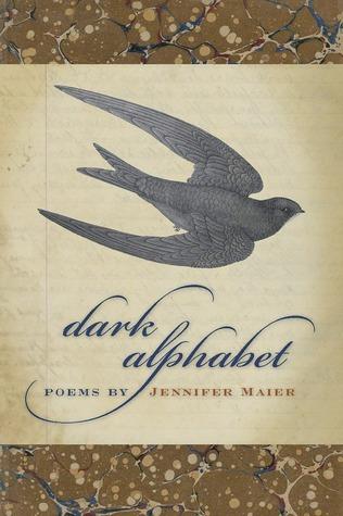 Dark Alphabet Jennifer Maier