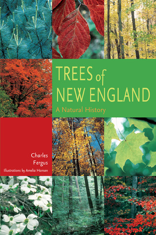 Trees of New England: A Natural History  by  Charles Fergus