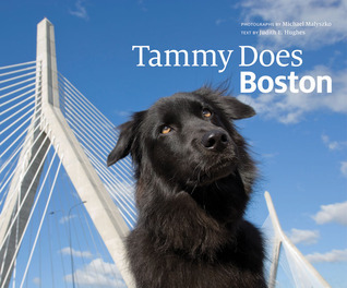 Tammy Does Boston  by  Judith Hughes