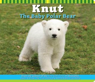 Knut The Baby Polar Bear Craig Hatkoff