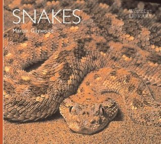 Snakes  by  Martin Gaywood