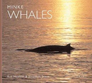 Minke Whales  by  A. Rus Hoelzel