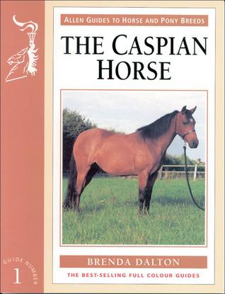 The Caspian Horse Brenda Dalton